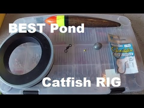 BEST Pond CATFISH Rig : How To TIPS N TRICKS