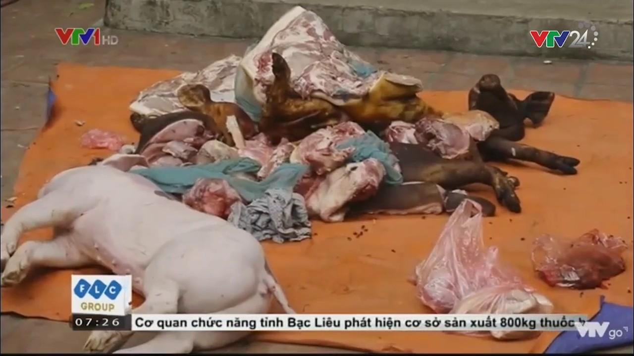 Tin Tức VTV24 : Bắt Quả Tang Cơ Sở Vận Chuyển Lợn Chết Được Giả Làm Lợn Mán Để Mang Đi Tiêu Thụ