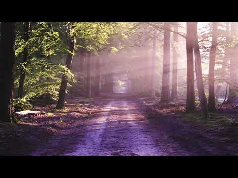 Yann Tiersen - Porz Goret (Revoucnav Remix)