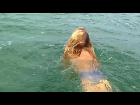 Sun fish at Orewa beach