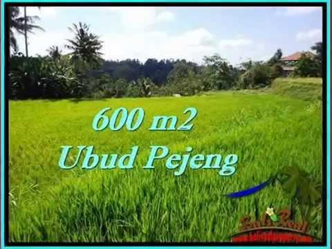 Affordable Bali PROPERTY 600 m2 LAND IN Ubud FOR SALE TJUB513