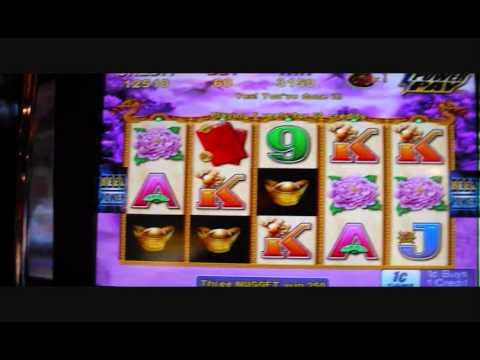 Choy coin doa free slots