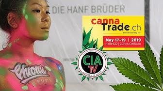 Im CBD Rausch auf der Cannatrade 2019 (Zürich) -  mit GreenConnection (GreenGermany)