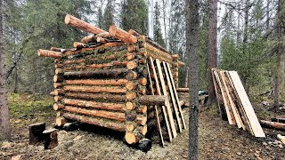 Building a Log Cabin. Wooden sauna in the taiga. Forest Film