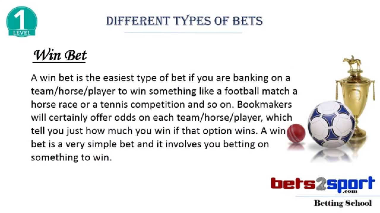 Different types of betting dog track betting terms dime
