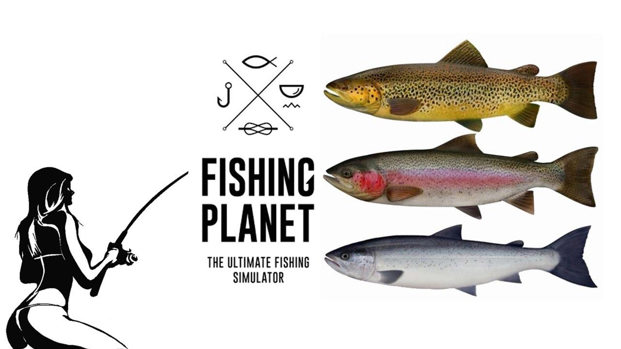 Интернет магазин перекресток предлагает купить форель ista. Рыба, речная. Состав, форель радужная (oncorhenchus mykiss) очищенная,