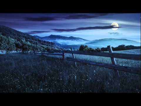 Som do grilo cri cri : sons da natureza para dormir, som de grilos, meditação, relaxar