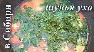 Лесная кухня: Самая вкусная Уха!