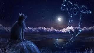 """Коты воители - Звёздное племя """" Засыпай небо"""""""