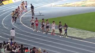 2019/5/4 ゴールデンゲームズinのべおか 男子10000m 設楽悠太選手