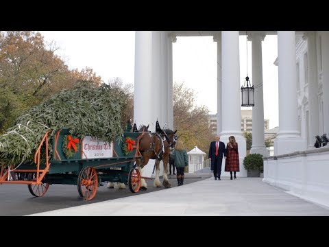 President Trump and the First Lady Receive the 2018 White House Christmas Tree
