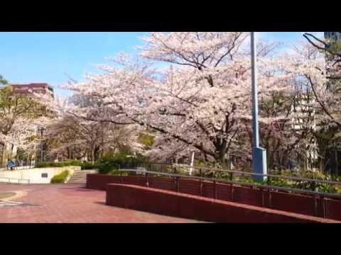 A day in Nagoya