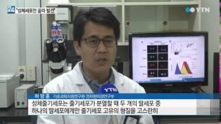 '성체줄기세포만 고른다' 암 진단 쉬워지…