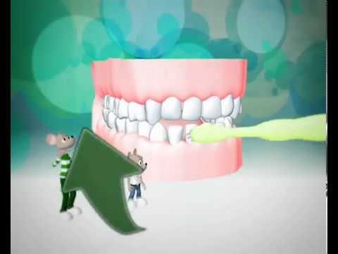 Le regole per curare i denti dei bambini youtube