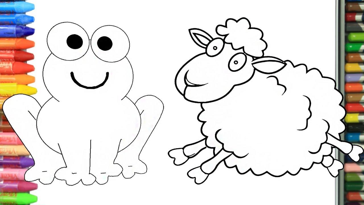 Como Dibujar Y Colorear Animales Dibujos Para Ninos Aprender