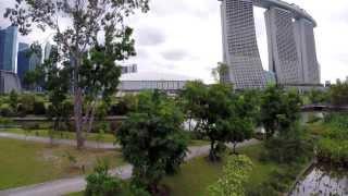 Flight by the Bay (DJI Phantom, GoPro Hero 3+, Gardens by the Bay, Singapore)