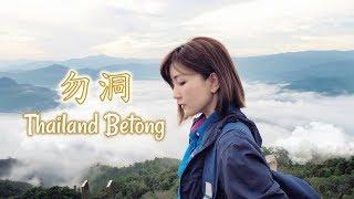 泰國勿洞Thailand Betong 4D3N 行程Vlog 雲海 美食l 泰國 ...