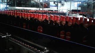 Amazing Beer Factory