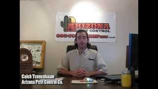 BBB Behind the Business Card | Arizona Pest Control