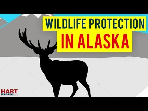 Wildlife Protection in Alaska State and America #Hart2020