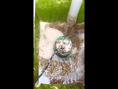 Bomba para agua BARMESA para lavar café