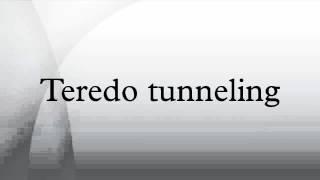 Teredo tunneling
