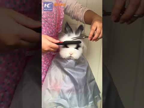 Getting A Haircut 76