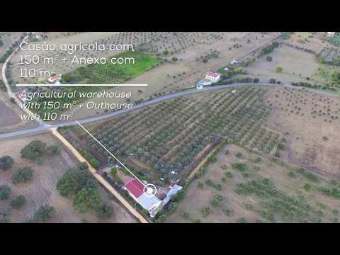 Horta Cruz  da Esperança - Vila Nova da Baronia