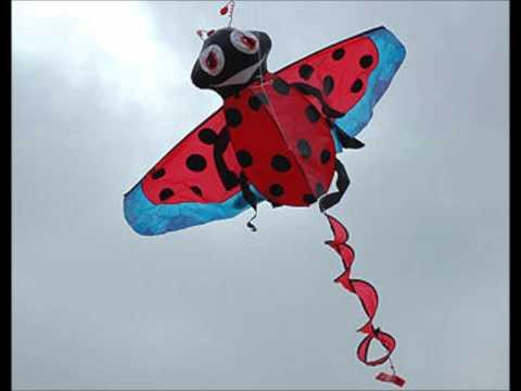 tjoep zegt de vlieger from YouTube · Duration:  50 seconds