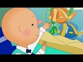 Funny Animated cartoon Kid | Caillou plays with fish | WATCH CARTOON ONLINE | Cartoon for Children