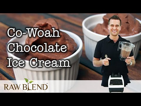 how-to-make-co-woah-chocolate-ice-cream-in-a-vitamix-blender-|-recipe-video