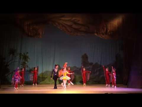 """Детский балет """"Дюймовочка"""". Бабочки, жуки и божьи коровки"""