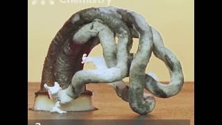 Эксперимент — Змея из глюконата кальция