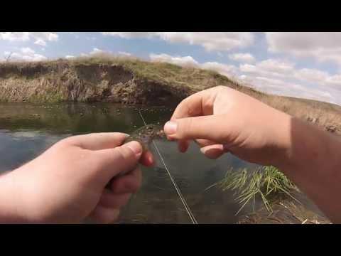 Fly Fishing Crab Creek In Eastern Washington
