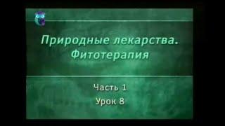 Фитотерапия. Урок 1.8. Лекарственные растения стимулирующего действия