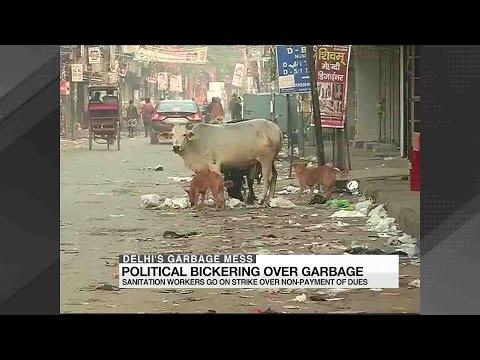 Delhi's garbage and sanitation crisis