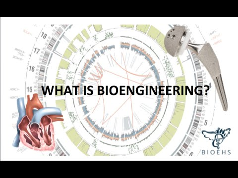 What is Bioengineering? | BioEHS