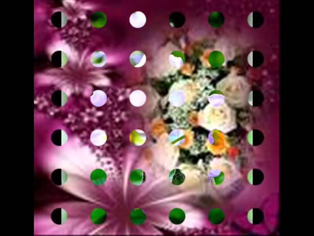 que-ma-vie-soit-une-fleur-abbey-antoine
