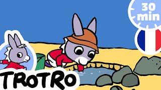 TROTRO - Trotro et son seau 💧 | dessin animé | HD |2020