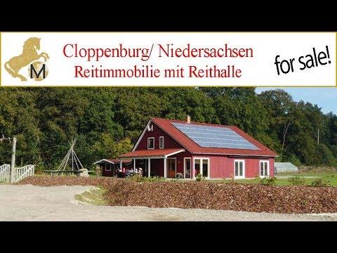 Reitimmobilie, Reiterhof In Niedersachsen, Nahe Cloppenburg Zu Verkaufen!