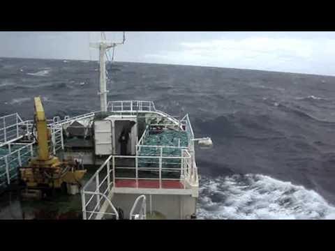 Tooth Fish Pots Fishing At Falkland Islands, South Atlantic Ocean, Midway Patagonia - Antarctica
