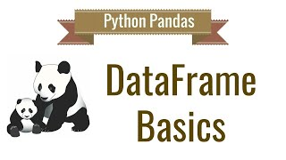 Pandas DataFrame | What is pandas in python?