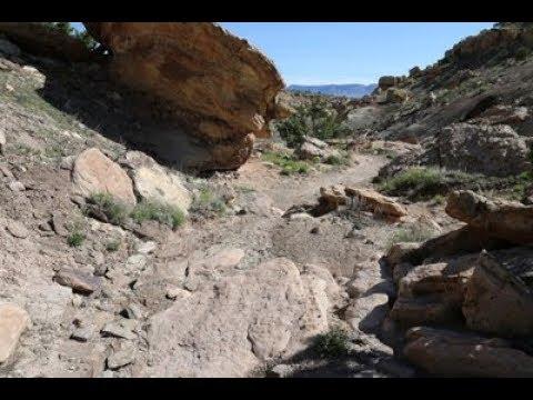 Miramonte Trail