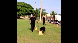 Sweetwater Police K-9 Unit