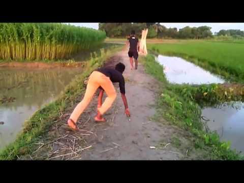 funny video bangla 2016