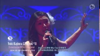 FictionJunction YUUKA - blessing