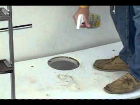 Bird Stain Removal Clear Coat Repair Doovi