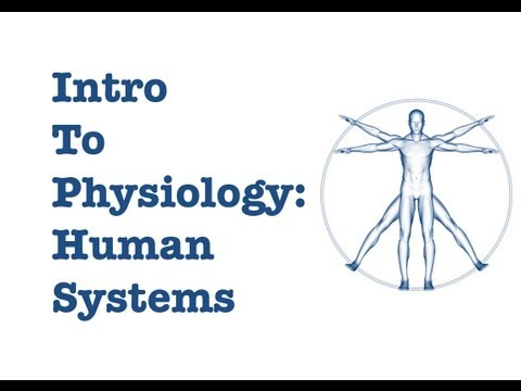 Introduction to Physiology: The Human Systems