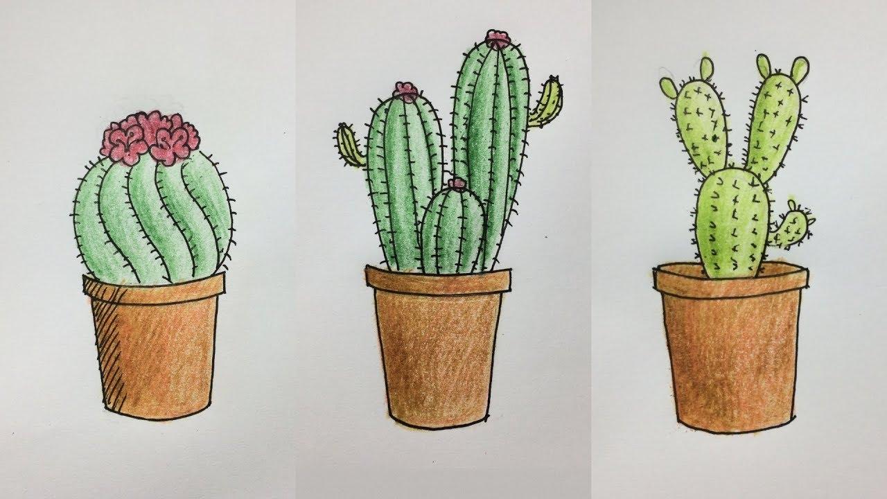 Draw Cactus Pots Dibujar Macetas De Cactus View Youtube
