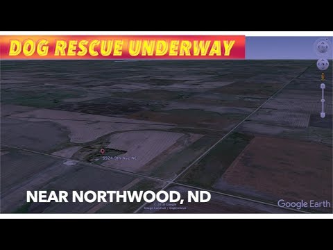 Dog Rescue Underway In Grand Forks County